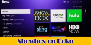 Read more about the article How to Install Showbox on Roku TV [updated]-Showbox apk 2020